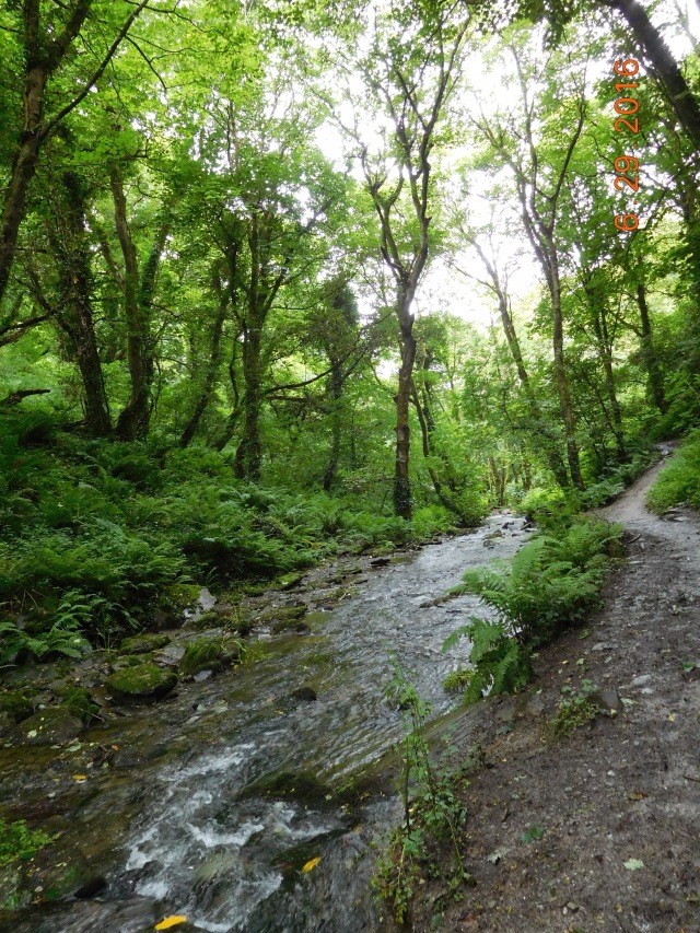 The path along the gushing stream to St. Nectan's Glen.